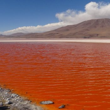 Surreal red lake, Laguna Colorado, Uyuni, Boliva.