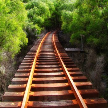 Old railway tracks near Pemberton, Western Australia.
