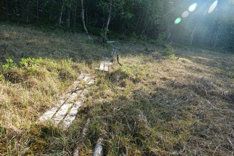 On the wettest parts of the trail, planks have been placed to reduce the risk of being swallowed by a bog.