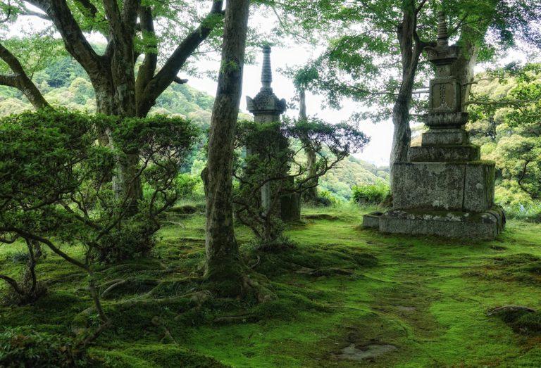 Garden at Seikan-ji shrine in Kyoto, Japan.