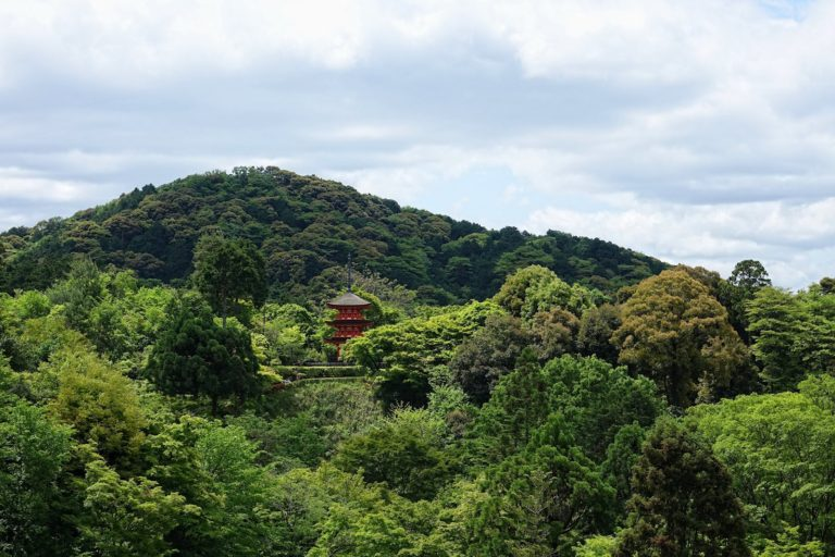 Red pagoda in green forest in Kyoto, Japan.