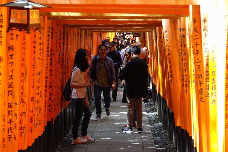Crowded torii tunnel at Fushimi Inari.