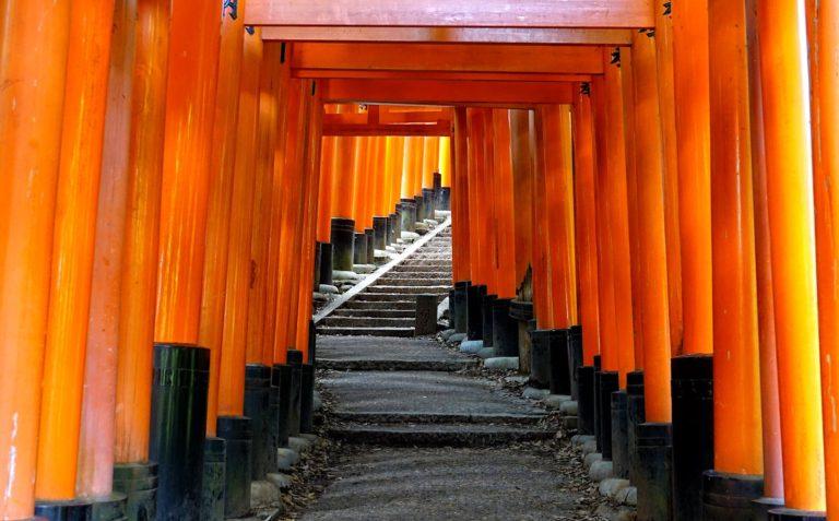 Instagram shot from Fushimi Inari Taisha.