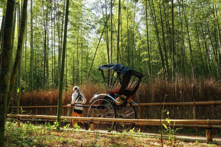 Tourist rickshaw at Arashiyama Bamboo Grove.