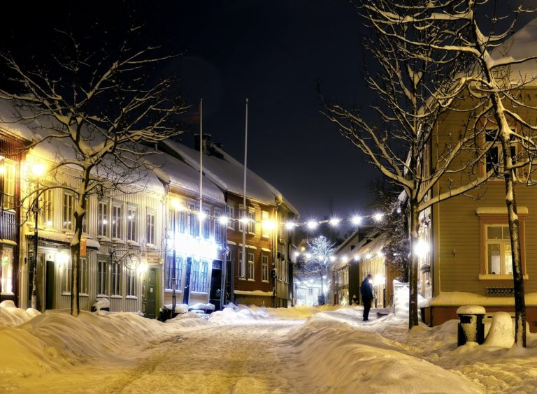 Walking the dog on a winter's night in Trondheim, Norway.