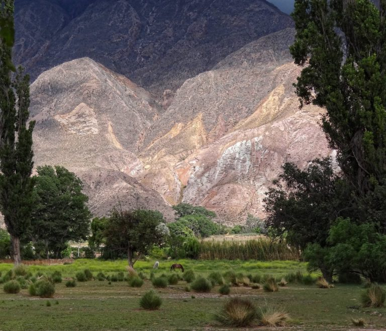 Horses grazing on the narrow strip of green land in the Rio Grande valley near Humahuaca in northern Argentina.
