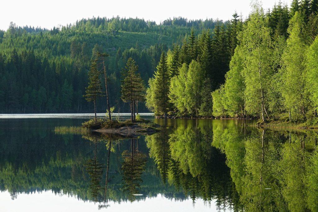 A typical lake along Rondanestien.