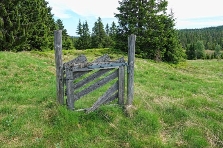 In Norway we have the right to roam freely in nature, so fences are few. There are a few gates, though.