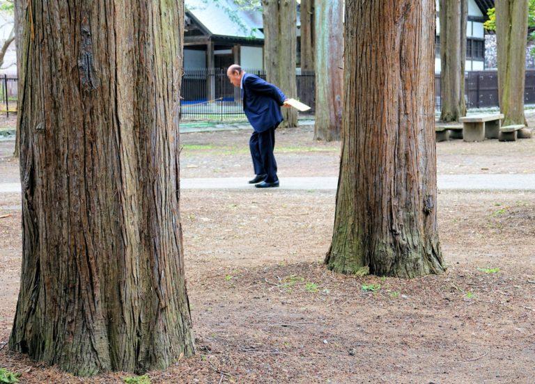 Wook this way. Salaryman in Maruyama Park.