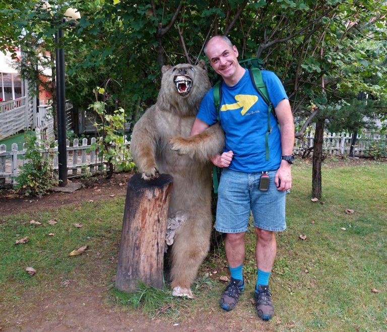 Two bears in Prishtina, Kosovo.