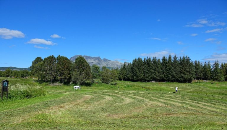 I can't recommend playing golf at this particular course. Maybe it gets better when the hay has been harvested.