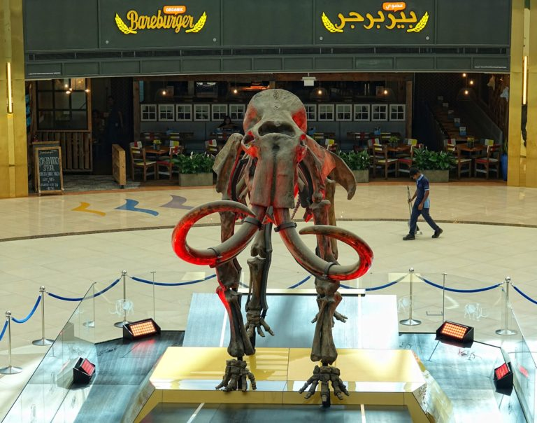 The Woolly Mammoth at Marina Mall, Abu Dhabi.
