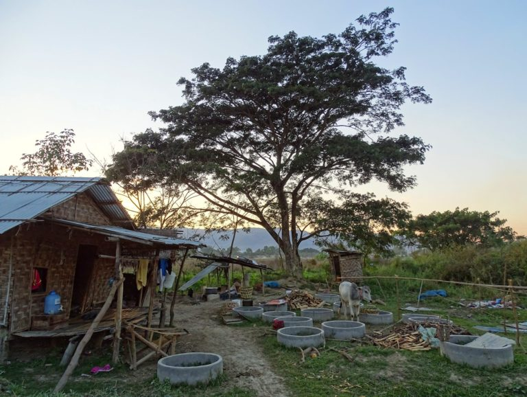 Photo of a protected garden in Myanmar