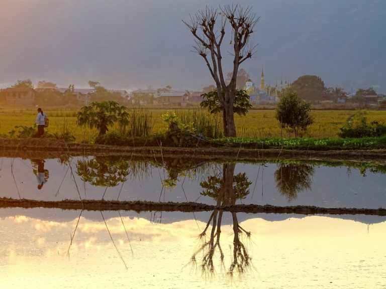 Sunset mirrored in the rice fields of Inle Lake.