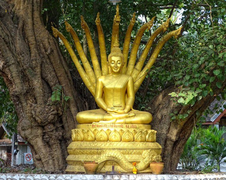 Naga Buddha statue in Luang Prabang, Laos