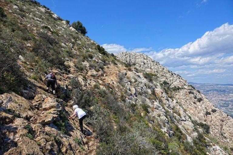 Mountain goats climbing in Calpe.