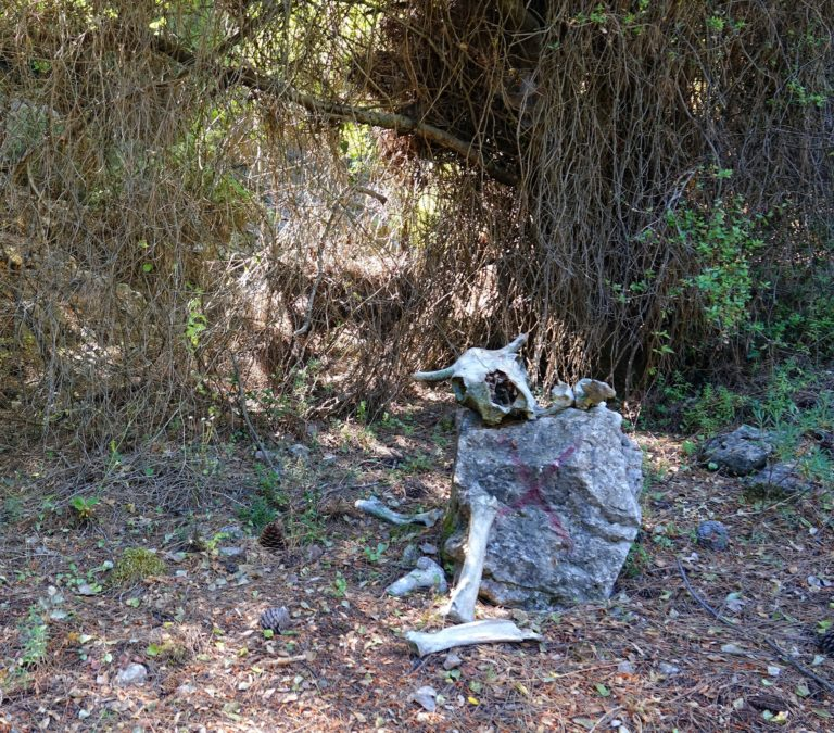 Photo of stop sign on the Lycian Way.