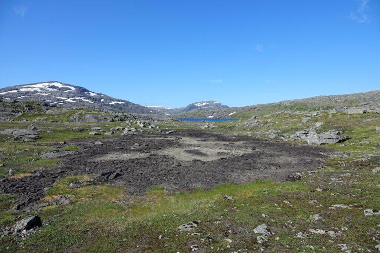 Dry marsh in Lomsdal-Visten National Park.