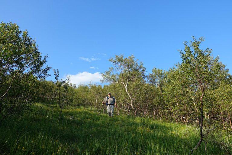 Final descent from Lomsdal-Visten National Park.