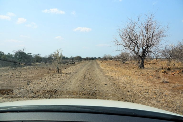 Photo of rough road in Kruger Park, Ngotso Weir Road.