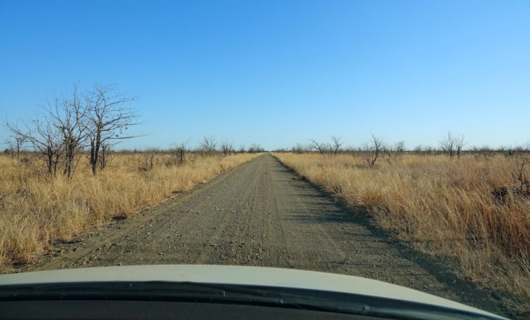 Photo of the Old Main Road in Kruger Park, South Africa.