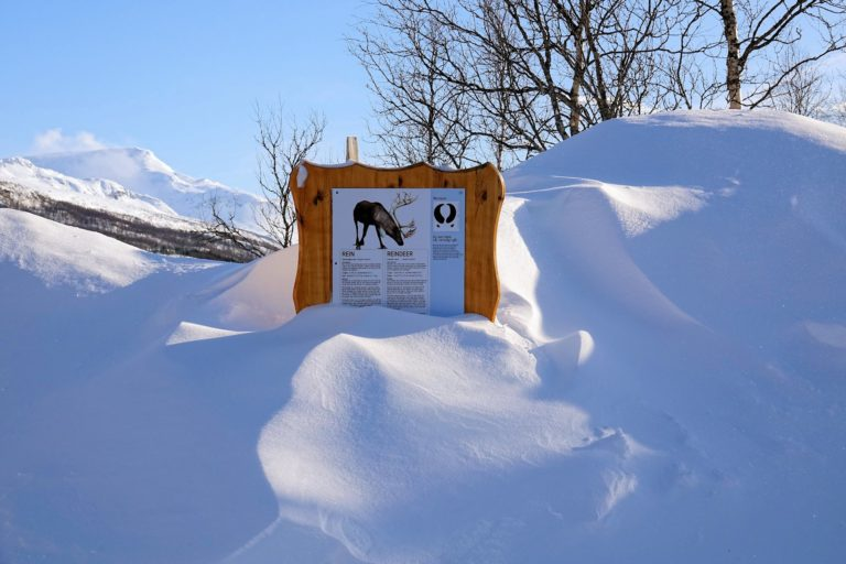 Photo of signpost buried in snow in Polar Park, Norway