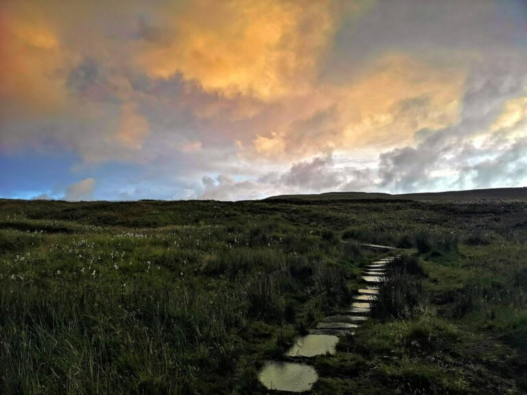 Photo of wet trail on Runde, Norway.