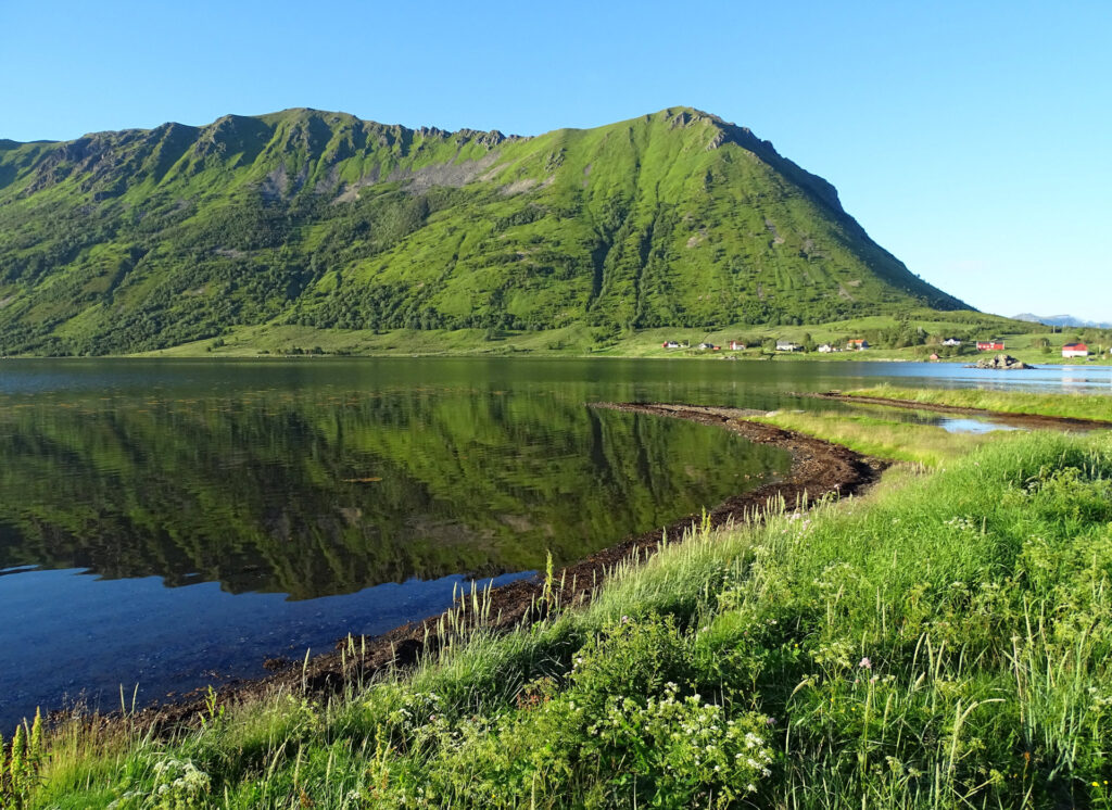 Steira in Lofoten, Norway, in summer.
