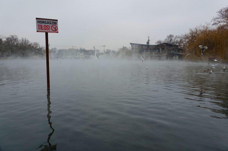 Photo of Varosligeti lake in City Park in Budapest, Hungary