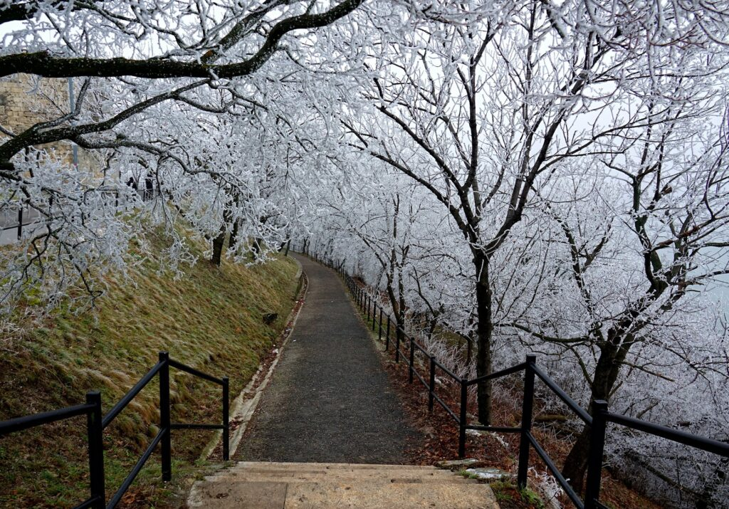 Photo of park trail on Gellert Hill in Budapest, Hungary