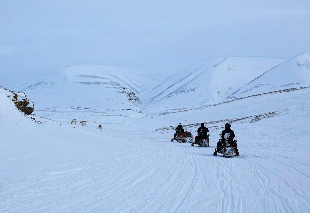 Photo of traffic jam on Svalbard, Norway.