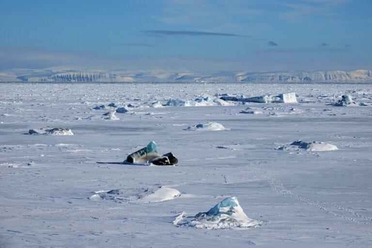 Photo of iceberg looking like a snowmobile.