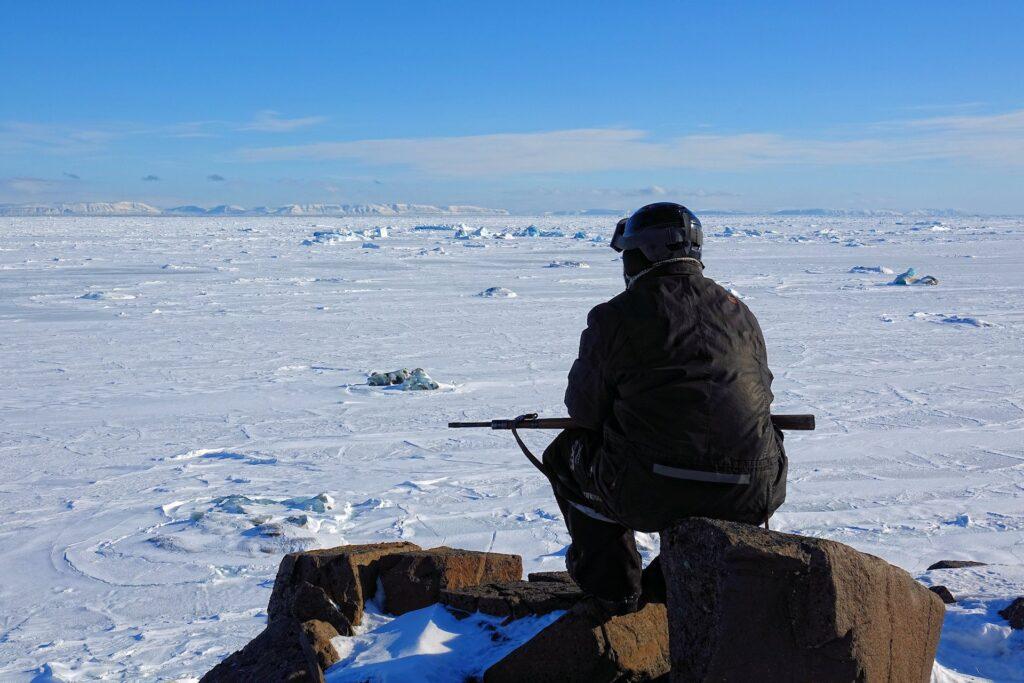 Photo of view across Storfjorden towards Edgeøya, Svalbard.
