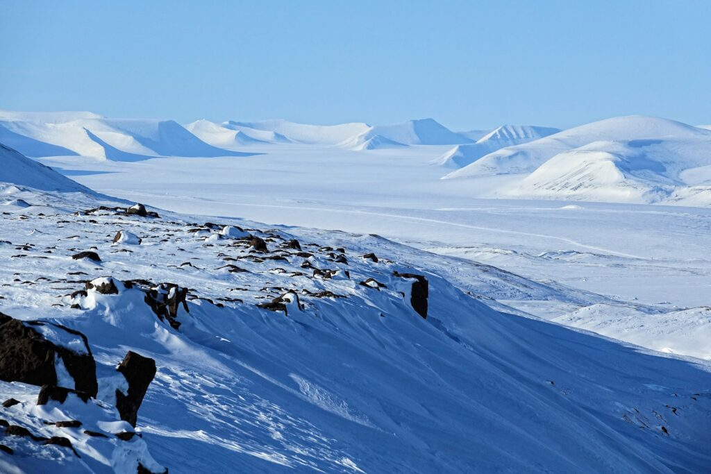 Photo of mountains surrounding the Hayes Glacier on Svalbard, Norway.